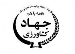 کشت برنج به روش خشکه کاری با ماشین کشت مستقیم در خوزستان اجرا شد