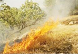 کمبود امکانات بلای جان مراتع آتشگرفته در خوزستان ؛  جنوب کشور نیازمند یک پایگاه هوایی اطفا حریق است