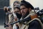 پسر احمدشاه مسعود: ما آماده گفتوگو با طالبان هستیم